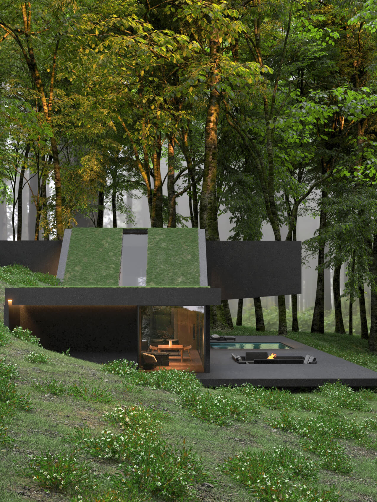 hillside house with green roof