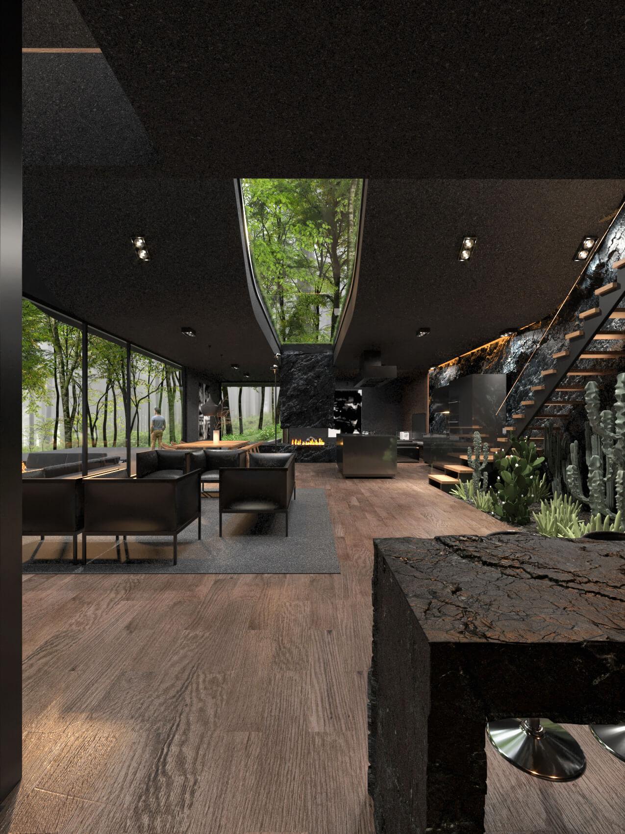 black house with skylight