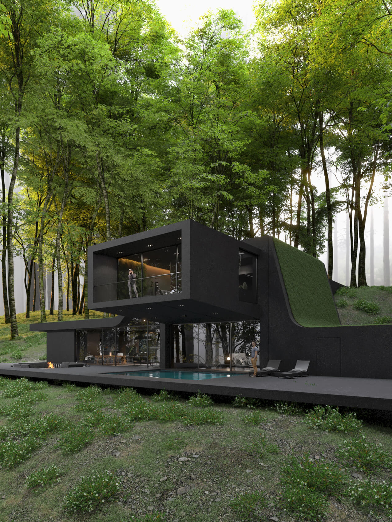 black villa surrounded by trees