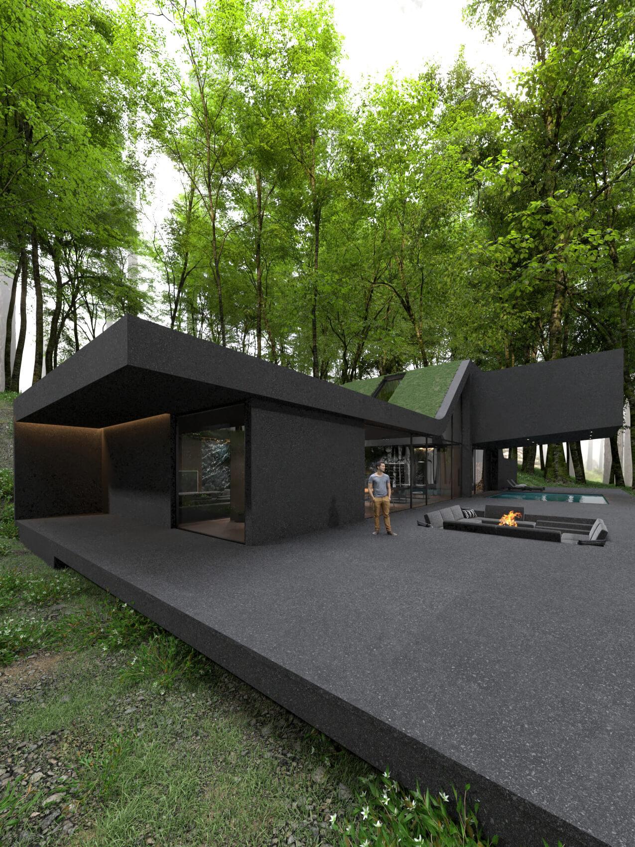 single gamily home design