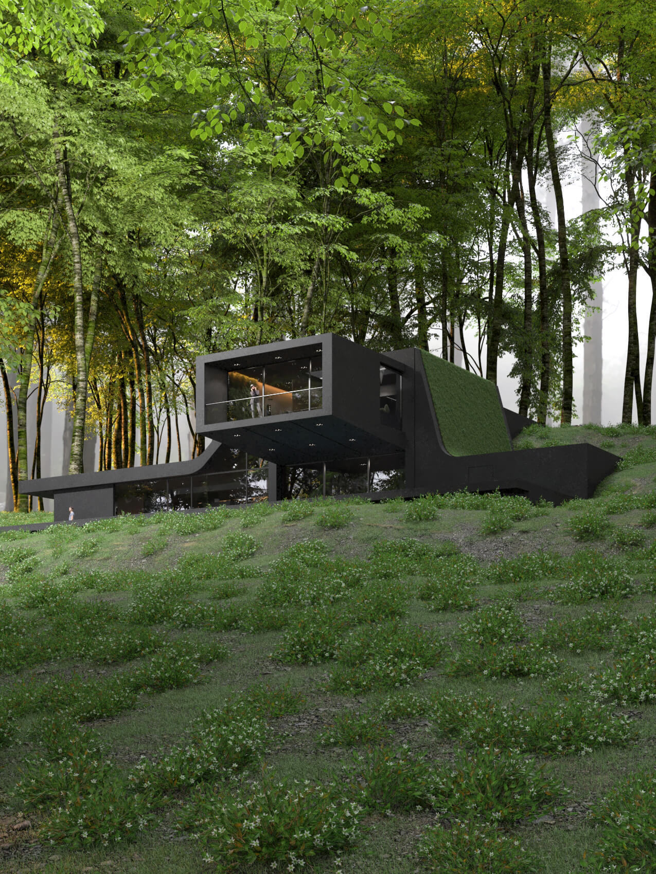 forest house surround by trees